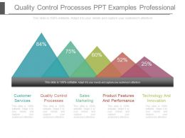 Quality Control Processes Ppt Examples Professional