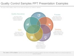 Quality Control Samples Ppt Presentation Examples