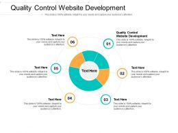 Quality Control Website Development Ppt Powerpoint Presentation Slides Show Cpb