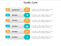 Quality Cycle Ppt Powerpoint Presentation Ideas Show Cpb