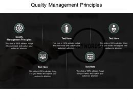 Quality Management Principles Ppt Powerpoint Presentation Infographics Pictures Cpb