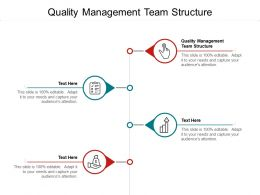 Quality Management Team Structure Ppt Powerpoint Presentation Ideas Cpb