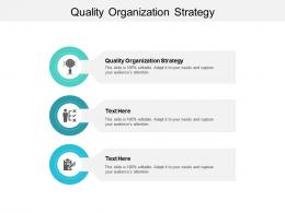 Quality Organization Strategy Ppt Powerpoint Presentation Professional Structure Cpb