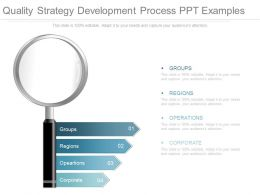 Quality Strategy Development Process Ppt Examples