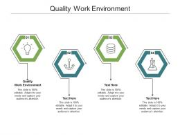Quality Work Environment Ppt Powerpoint Presentation Infographics Picture Cpb