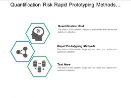 Quantification Risk Rapid Prototyping Methods Organizational Communication Problems Cpb