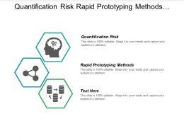 quantification_risk_rapid_prototyping_methods_organizational_communication_problems_cpb_Slide01