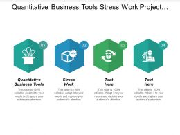 Quantitative Business Tools Stress Work Project Management Performance Cpb