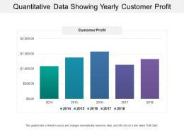 Quantitative Data Showing Yearly Customer Profit