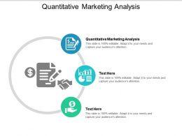 Quantitative Marketing Analysis Ppt Powerpoint Presentation File Templates Cpb