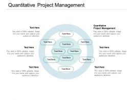 Quantitative Project Management Ppt Powerpoint Presentation Gallery Cpb