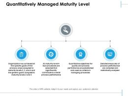 Quantitatively Managed Maturity Level