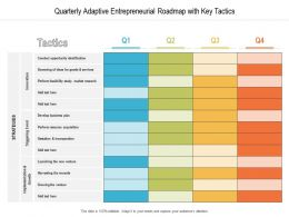 Quarterly Adaptive Entrepreneurial Roadmap With Key Tactics