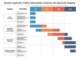 Quarterly Application Portfolio Rationalization Roadmap With Opportunity Mapping