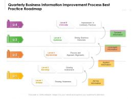 Quarterly Business Information Improvement Process Best Practice Roadmap