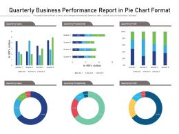 Quarterly Business Performance Report In Pie Chart Format