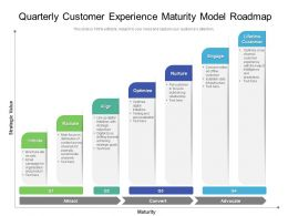 Quarterly Customer Experience Maturity Model Roadmap