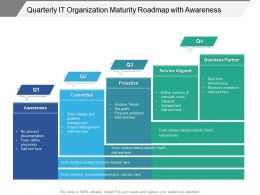 Quarterly IT Organization Maturity Roadmap With Awareness
