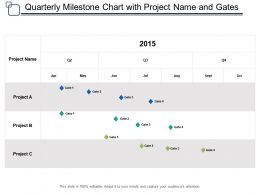 Quarterly Milestone Chart With Project Name And Gates