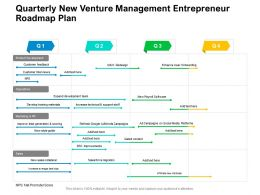 Quarterly New Venture Management Entrepreneur Roadmap Plan