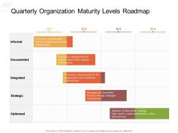 Quarterly Organization Maturity Levels Roadmap