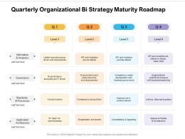 Quarterly Organizational Bi Strategy Maturity Roadmap