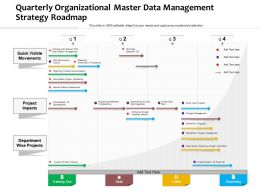 Quarterly Organizational Master Data Management Strategy Roadmap