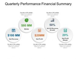 Quarterly Performance Financial Summary Powerpoint Guide