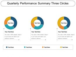 Quarterly Performance Summary Three Circles PPT Samples