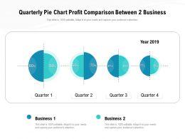 Quarterly Pie Chart Profit Comparison Between 2 Business