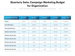 Quarterly Sales Campaign Marketing Budget For Organization