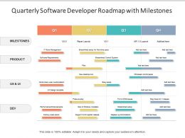 Quarterly Software Developer Roadmap With Milestones