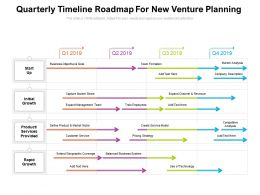 Quarterly Timeline Roadmap For New Venture Planning