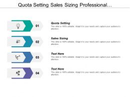 Quota Setting Sales Sizing Professional Development Channel Management