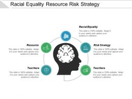 Racial Equality Resource Risk Strategy Turnaround Strategy Unrecognized Cpb