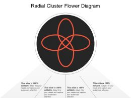 Radial Cluster Flower Diagram