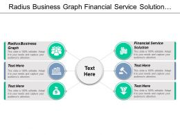 Radius Business Graph Financial Service Solution Ecommerce Strategies Cpb
