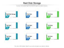 Raid Disk Storage Ppt Powerpoint Presentation File Outline Cpb