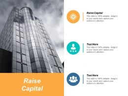 Raise Capital Ppt Powerpoint Presentation Gallery Slide Download Cpb