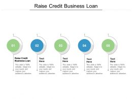 Raise Credit Business Loan Ppt Powerpoint Presentation Slides Infographics Cpb