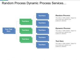 Random Process Dynamic Process Services Process Organizational Assets