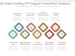 Rapid Auditing Ppt Diagram Powerpoint Graphics