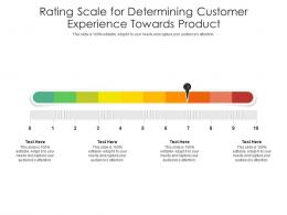 Rating Scale For Determining Customer Experience Towards Product Infographic Template