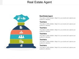 Real Estate Agent Ppt Powerpoint Presentation Icon Influencers Cpb