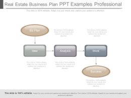 Real Estate Business Plan Ppt Examples Professional