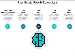Real Estate Feasibility Analysis Ppt Powerpoint Presentation Icon Microsoft Cpb