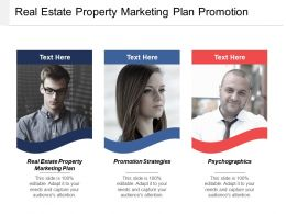 Real Estate Property Marketing Plan Promotion Strategies Psychographics Cpb