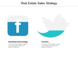 Real Estate Sales Strategy Ppt Powerpoint Presentation Ideas Infographics Cpb