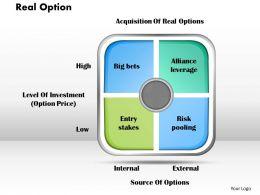 real_option_powerpoint_presentation_slide_template_Slide01