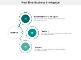 Real Time Business Intelligence Ppt Powerpoint Presentation Show Background Image Cpb